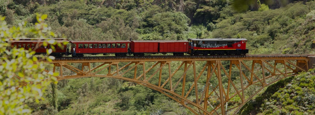 Tren de la Libertad I