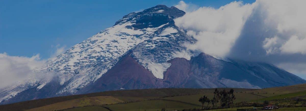 Tren de los Volcanes II