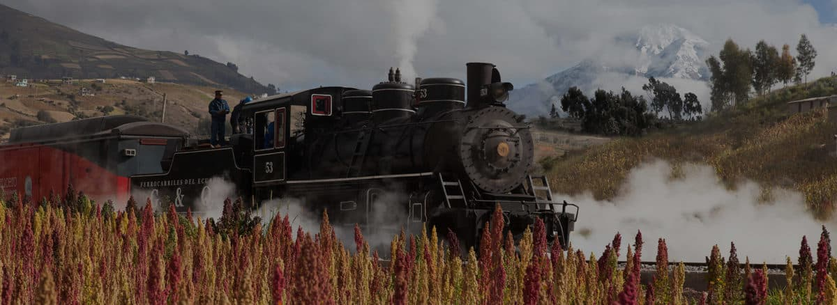 Tren de las Maravillas