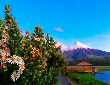 Tour-Cotopaxi-Volcan